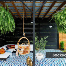 Best Backyard Accessories/Things to Set Up